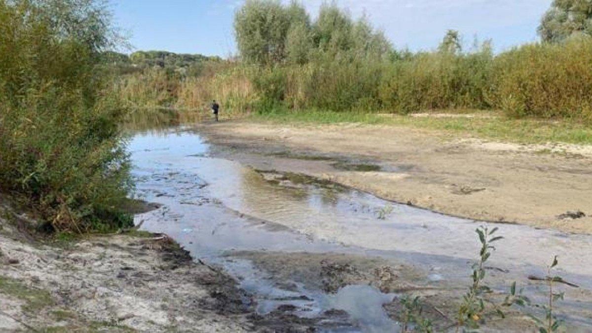 В Україні зареєстрували найнижчий за 100 років рівень води в ...