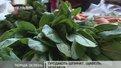 На прилавках з'явилась перша львівська городина