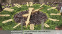 Львівський час знову відраховує квітковий годинник