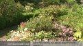 У ботанічному саду університету Франка в неділю - день відкритих дверей
