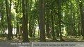 Парк імені Івана Павла ІІ розширили