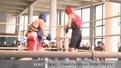 Бокс: чемпіонат області - шанс потрапити в збірну