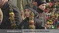 Львів'яни вже купують лозу