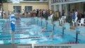 Відбувся чемпіонат області з плавання
