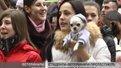 Студенти Ветеринарного університету вийшли на протест з тваринами
