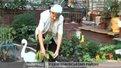 У Шевченківському районі обирають найкраще подвір'я