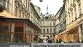 На львівських дахах ростуть клени та берізки