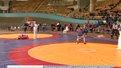 Завершився чемпіонат світу з самбо