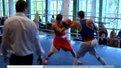 Бокс: Завершується чемпіонат області серед дорослих