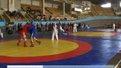 У Львові завершився чемпіонат України з самбо