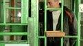 На Львівщині готові амністувати 732 засуджених