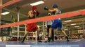 У Львові завершився боксерський турнір Андрія Котельника