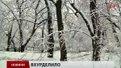 Головні новини Львова за 03.04