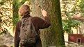 Львів'яни, щоб вберегти сквер Святого Юра від вирубки, процвяхували дерева