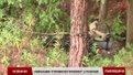 Військові навчання «Стрімкого тризуба» на Яворівському полігоні у розпалі