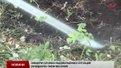 З початку року у Львові зафіксували 224 пожежі