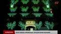 У Львові на фестивалі «Різдвяні лялькові історії» ожила казка