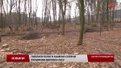 На Золочівщині селяни зупинили варварську вирубку лісу