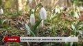 У львівському ботанічному саду весна вже настала