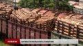 У Ходорові досі блокують товарняки з лісом через підозру міжнародної контрабанди