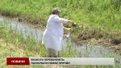 Екологи перевіряють якість води та повітря у Львові