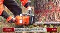 Рекорд лісоруба з Радехівського лісництва вже 14 років ніхто не може побити