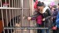 В ЛКП «Лев» дітей вчать відповідати за тварин
