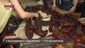 Шкіряні панно та постоли покажуть на виставці у львівському музеї Франка