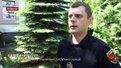 Машина патрульної поліції збила жінку на переході у центрі Львова