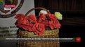 Львівські студенти виготовляють квіти, а виручені кошти передають для порятунку дітей