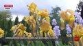 У неділю львів'ян запрошують на День відкритих дверей у Ботанічний сад