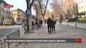 Автори проекту «Вулиця для всіх» представили переваги реконструкції вул. Бандери