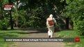 Кожен третій перевірений кліщ з львівських парків інфікований хворобою Лайма