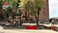 Біля колишнього заводу «Полярон» у Львові забудовник зрізав рідкісні дерева