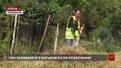 Через несплату аліментів жінка змушена прибирати вулиці Дрогобича