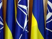 Тимошенко наростила рейтинг на ідеї референдуму про НАТО