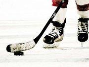 Чемпіонат світу з хокею-2015 відбудеться в Донецьку