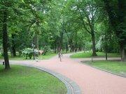 У львівському парку загубився хлопчик: шукали п'ять годин