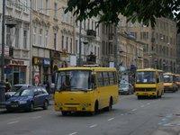 Этот вид транспортного сообщения развит хорошо, в городе функционирует 89 маршрутов.  Маршрутные такси курсируют с...