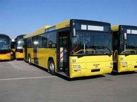 На чотири пакети автобусних маршрутів Львова є п'ять претендентів.