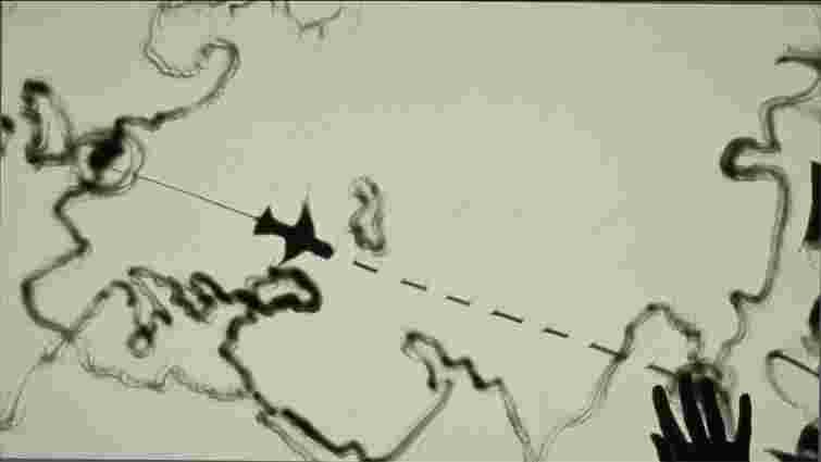 Художниця з Молдови намалювала на піску падіння Боїнга 777