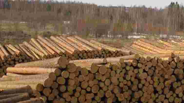 Верховна Рада ввела мораторій на експорт необробленої деревини