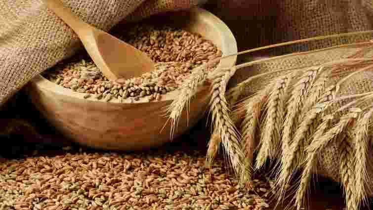 Запаси зерна в Україні до 1 квітня зросли на 33%