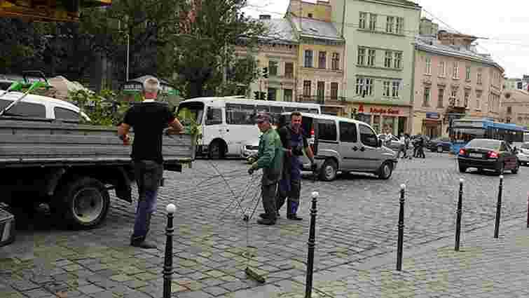 Негода завалила у Львові три дерева та пошкодила дроти
