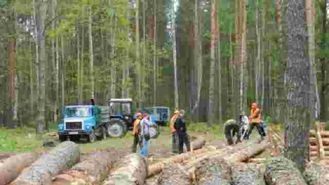 На Львівщині браконьєри жорстоко побили двох лісників