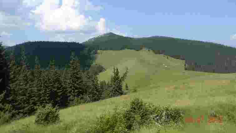Нацгвардія стягує сили до гори Явірник у Закарпатській області