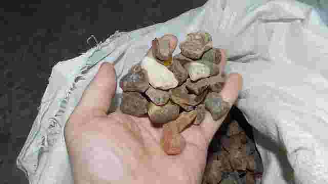 На кордоні в Шегинях виявили 150 кг контрабандного бурштину
