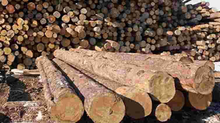 Незаконну вирубку лісів на Львівщині контролюватимуть за допомогою GPS