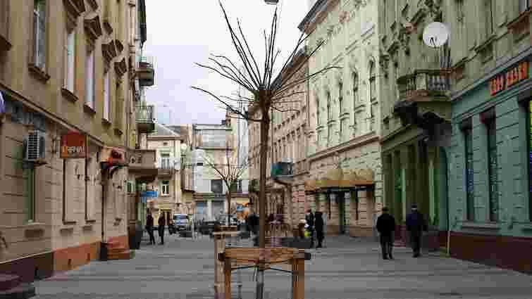 Львів'янам пропонують визначити місця для озеленення в 2016 році