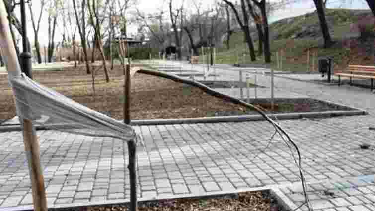 В Одесі зловмисники зламали дерева, висаджені на алеї пам'яті Небесної сотні